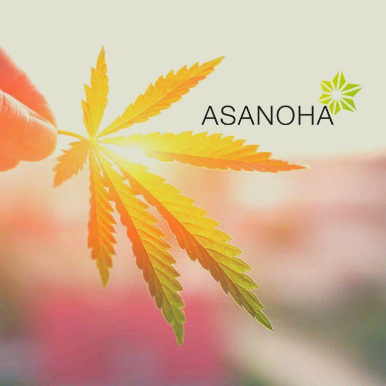 asanoha_welcome